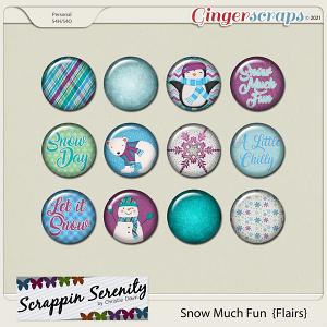 Snow Much Fun Flairs