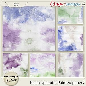 Rustic splendor Painted papers