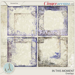 In This Moment Overlays by Ilonka's Designs