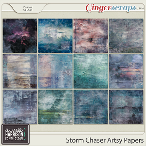 Storm Chaser Artsy Papers by Aimee Harrison