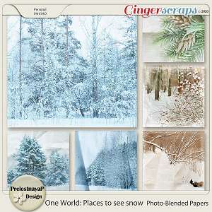 One World: Places to see snow Photo-Blended Papers