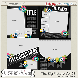 The Big Picture Volume 28 - 12x12 Temps (CU Ok) by Connie Prince