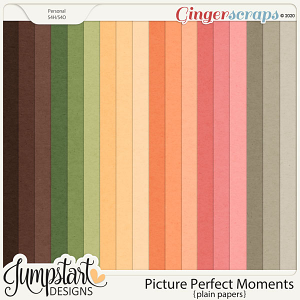 Picture Perfect Moments {Plain Papers}