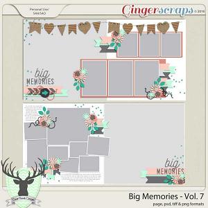 Big Memories Vol 7