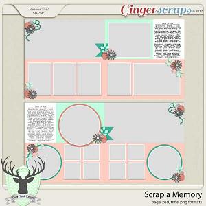 Scrap a Memory