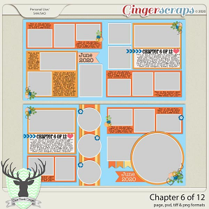 Chapter 6 of 12 by Dear Friends Designs