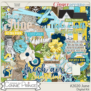 #2020 June - Kit by Connie Prince