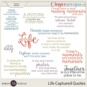Life Captured Quotes by Karen Schulz