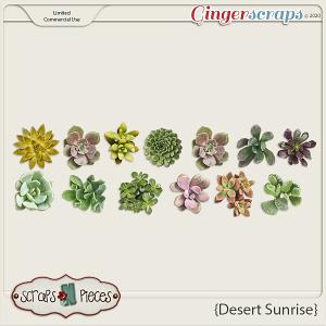 Desert Sunrise CU Mini Succulents by Scraps N Pieces