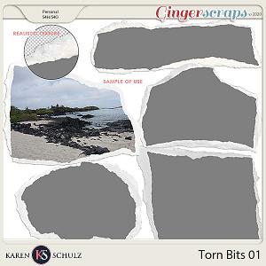 Torn Bits 01 by Karen Schulz