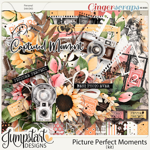 Picture Perfect Moments {Kit}
