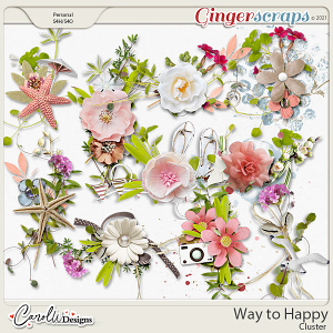 Way to Happy-Cluster