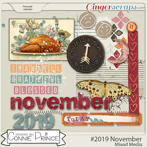 #2019 November - Mixed Media by Connie Prince