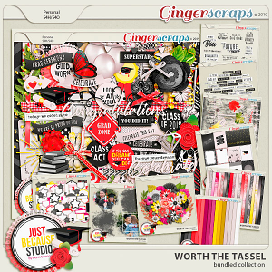 Worth The Tassel Bundled Collection by JB Studio