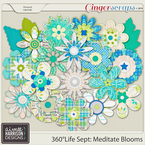 360°Life Sept: Meditate Blooms by Aimee Harrison