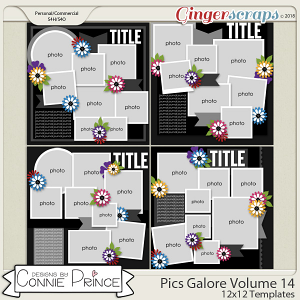 Pics Galore Volume 14 - 12x12 Temps (CU Ok) by Connie Prince