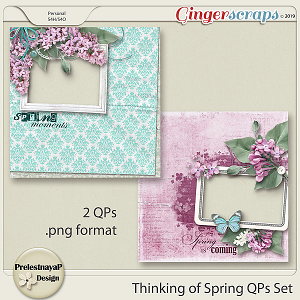 Thinking of Spring QPs Set