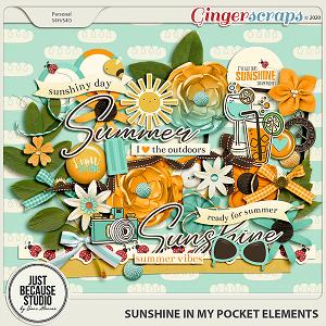 Sunshine In My Pocket Elements by JB Studio