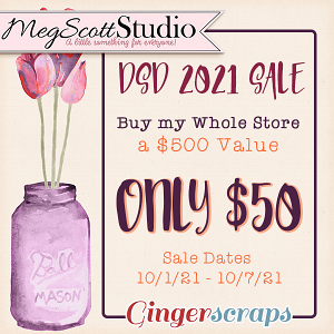 DSD Special - Buy My Store