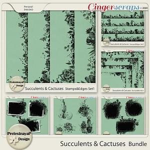 Succulents and Cactuses Bundle
