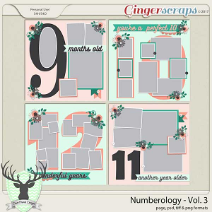 Numerology Vol 3