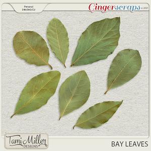 CU Bay Leaves by Tami Miller Designs