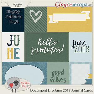 Document Life June 2018 Journal Cards by Luv Ewe Designs