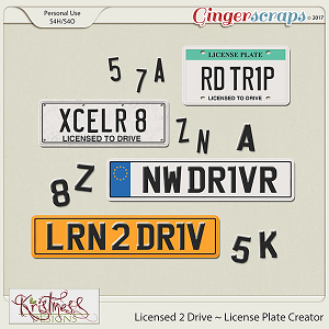 Licensed 2 Drive License Plate Creator