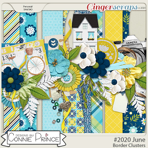 #2020 June - Border Clusters by Connie Prince
