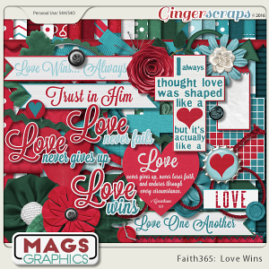 Faith365 Love Wins KIT