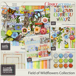 Field of Wildflowers Collection by Aimee Harrison