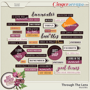 Through The Lens Word Bits by JB Studio