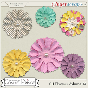 Commercial Use Flowers Volume 14 by Connie Prince