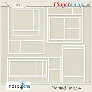 Framed Misc 4 by Lindsay Jane