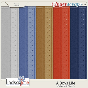 A Boys Life Embossed Papers by Lindsay Jane