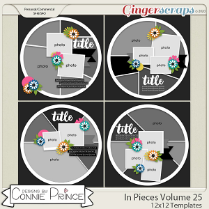 In Pieces Volume 25 - 12x12 Temps (CU Ok) by Connie Prince