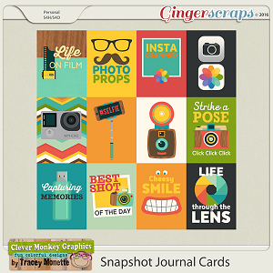 Snapshot Journal Cards by Clever Monkey Graphics