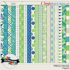 Press Pause - Papers by Lisa Rosa Designs