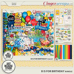 B is For Birthday Bundle by JB Studio