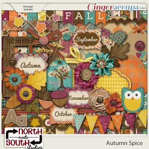 Autumn Spice Kit by North Meets South Studios