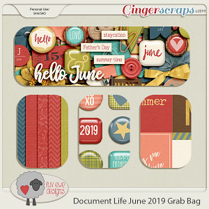 Document Life June 2019 Grab Bag by Luv Ewe Designs