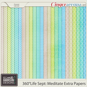 360°Life Sept: Meditate Extra Papers by Aimee Harrison