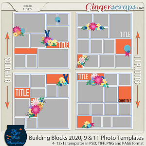 Building Blocks 2020 9 and 11 Photo Templates by Miss Fish