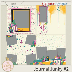 The Cherry On Top:  Journal Junky 2