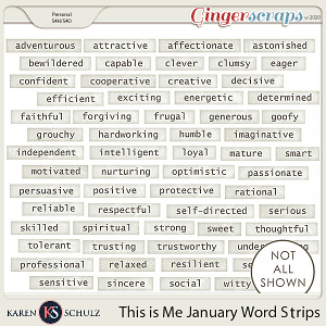 This is Me January Word Strips by Karen Schulz