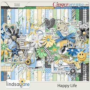 Happy Life by Lindsay Jane
