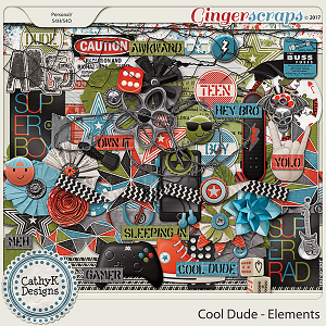 Cool Dude - Elements