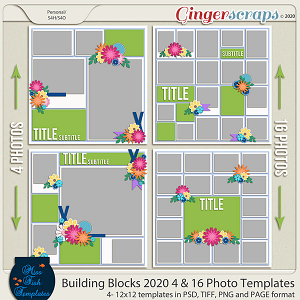 Building Blocks 2020 4 and 16 Templates by Miss Fish