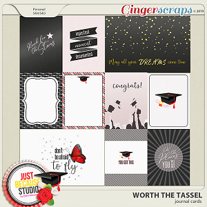 Worth The Tassel Cards by JB Studio