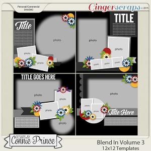 Blend It Volume 3 - 12x12 Temps (CU Ok)